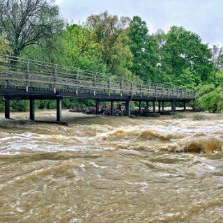 Hochwasser am Flaucher