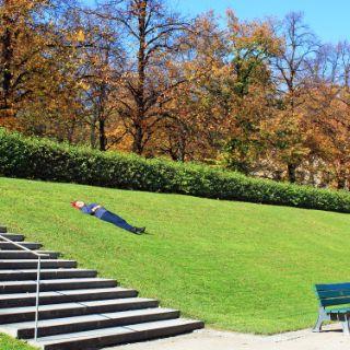 Hofgarten vor der Staatskanzlei