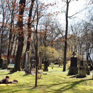 Münchner Sonnenplätze: Alter Nördlicher Friedhof