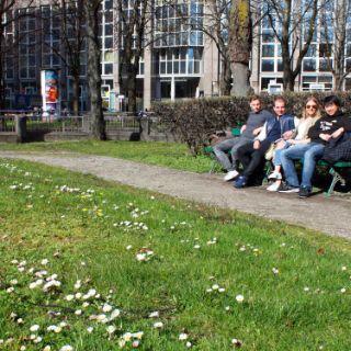 Münchner Sonnenplätze: Grünfläche an der Ottostraße