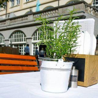 Ob im Festsaal, einer der kleineren Stuben oder im Biergarten –der Löwenbräukeller bietet das richtige Ambiente für Münchner und Touristen