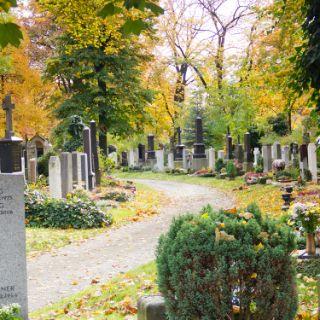 Ostfriedhof in Obergiesing