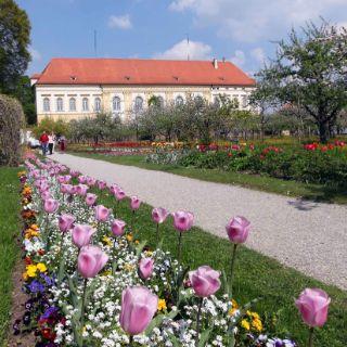 Die Große Kreisstadt Dachau