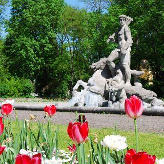 Bilder vom Alten Botanischen Garten