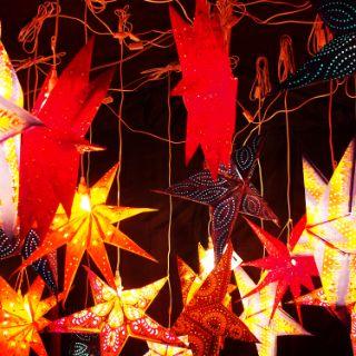Bogenhauser Weihnachtszauberwald