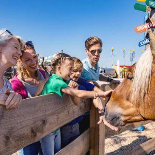 Die einzigartige Pferde-Erlebniswelt in München: Erlebt mit der ganzen Familie die Welt der Pferde, hautnah und mit allen Sinnen!
