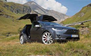 Tesla vor Bergkulisse