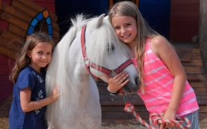 Equilaland, Pferde, Foto: Equilaland