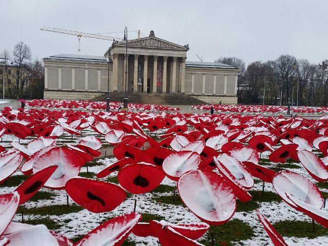 """Der Künstler Walter Kuhn und seine Helfer """"pflanzten"""" für """"Never again"""" auf den Freiflächen 3.000 Mohnblumen aus Kunstseide., Foto: Walter Kuhn"""