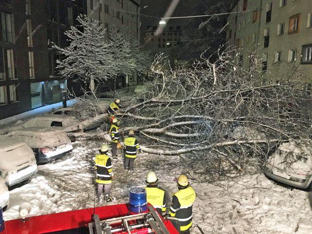Feuerwehr im Einsatz bei Schnee, Foto: Berufsfeuerwehr München
