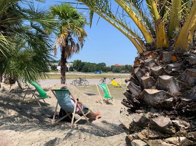 Palmengarten auf der Theresienwiese, Foto: Rico Güttich