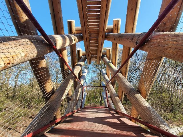 "Kunstprojekt ""Bridge Sprout"", Foto: Saskia Ziegler"