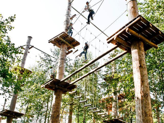 grünwald kletterwald