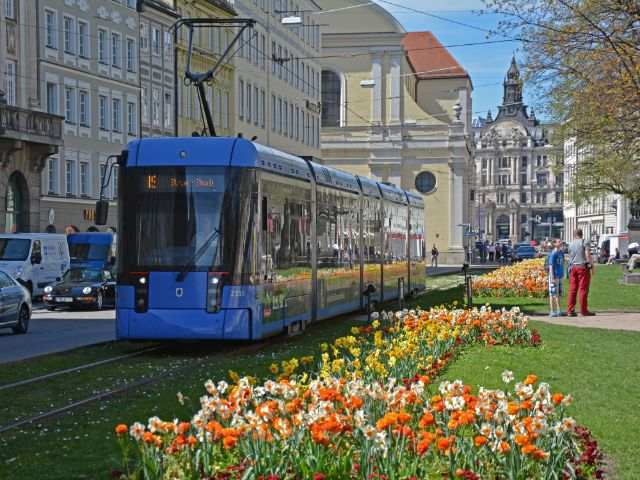 Tram 19 am Promenadeplatz im Frühling, Foto: muenchen.de/Michael Hofmann