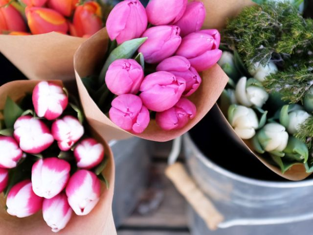 Frische Blumen, Foto: Anette Göttlicher