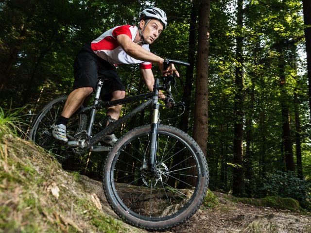 Mountainbiker im Wald, Foto: Stefan Schurr / Shutterstock.com