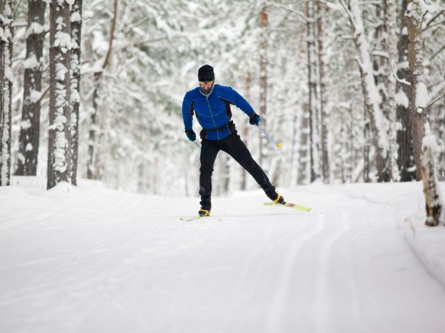 Langläufer fährt durch schneebedeckten Wald, Foto: Fotokvadrat / Shutterstock.com