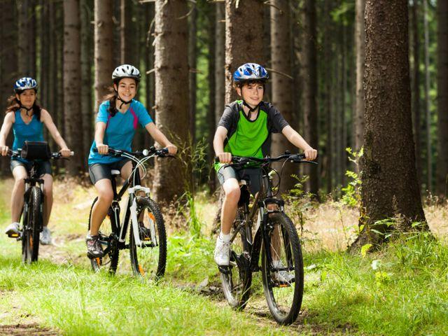 Kinder fahren Fahrrad durch Wald, Foto: Jacek Chabraszewski / Shutterstock