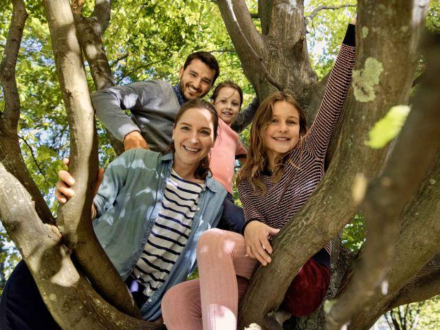 Familie auf einem Baum, Foto: AOK Bundesverband