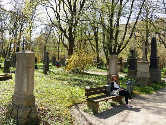 Alter Südlicher Friedhof in München, Foto: muenchen.de/Leonie Liebich
