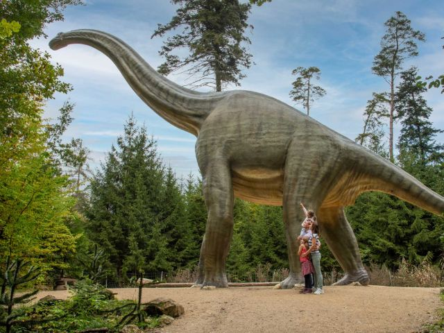 Brontosaurus im Dinosaurier Museum Altmühltal, Foto: Dinosaurier Museum Altmühltal