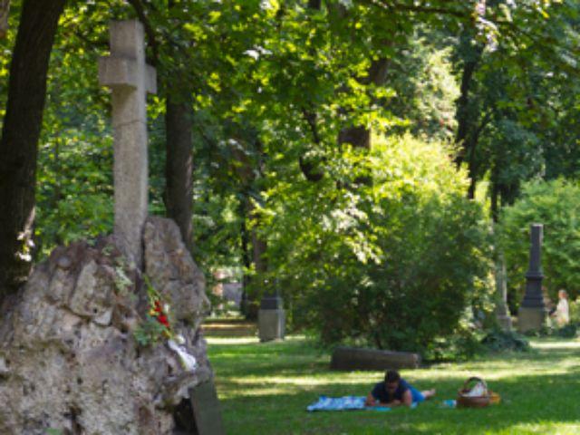 Alter Nordfriedhof München, Foto: Katy Spichal