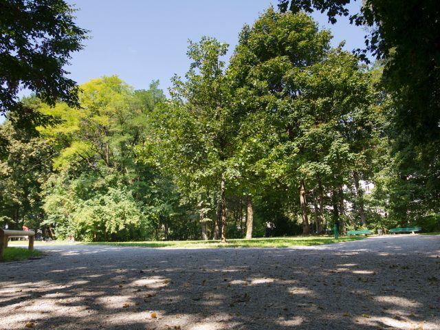 Der Leopoldpark in Schwabing, Foto: Katy Spichal