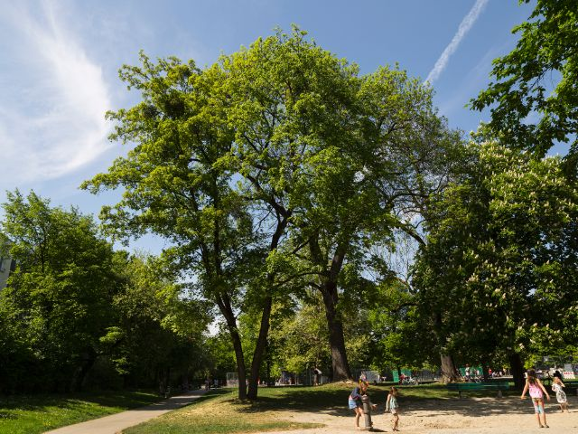 Parks, Friedhöfe in München, Foto: muenchen.de/Katy Spichal