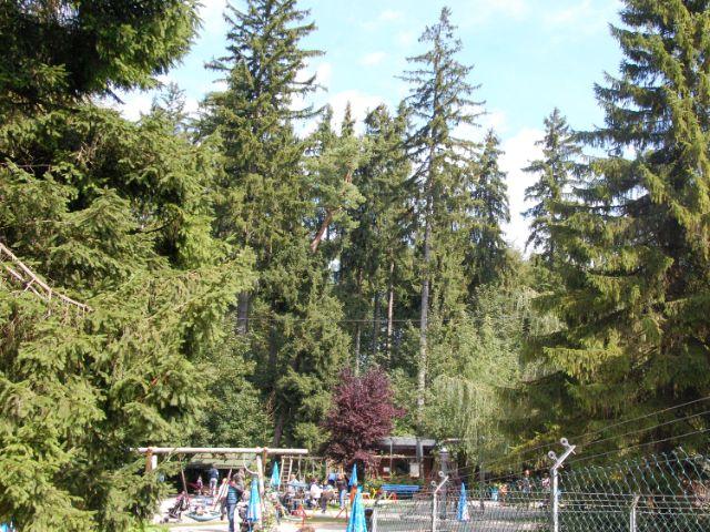 Schongauer Märchenwald, Foto: Schongauer Märchenwald