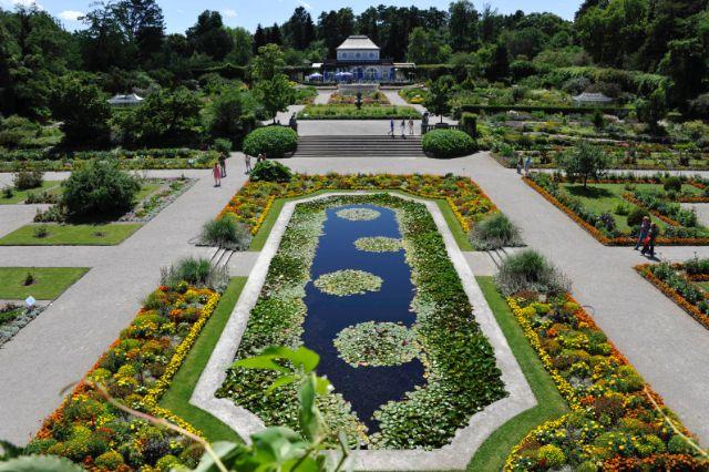 , Foto: Botanischer Garten München