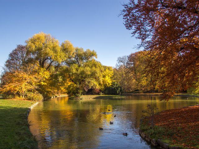Englischer Garten im Herbst , Foto: Lukas Fleischmann