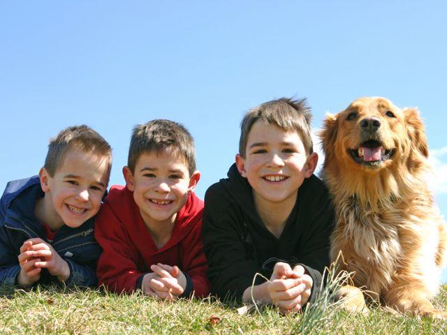 Jungs mit Hund, Foto: sonya etchison/Shutterstock.com