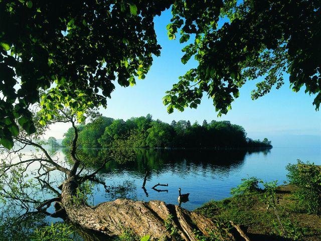Die romantische Roseninsel im Starnberger See, Foto: Tourismusverband Starnberger Fünf-Seen-Land