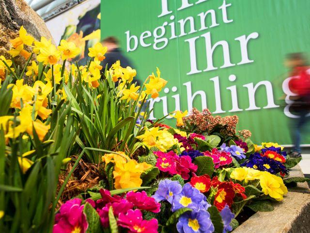 Blumen auf der Gartenmesse in München, Foto: GHM