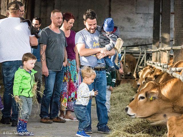 Familie mit Kindern im Kuhstall