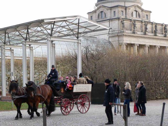 Kutsche im Hofgarten, Foto: Bayerisches Staatsministerium für Ernährung, Landwirtschaft und Forsten