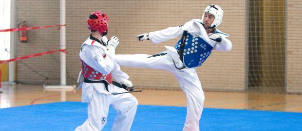 Taekwondo-Kämpfer im Ring, Foto: Rob Wilson / Shutterstock.com