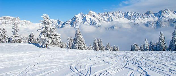Skispuren im Schnee vor Gebirgskette, Foto: Natali Glado / Shutterstock.com