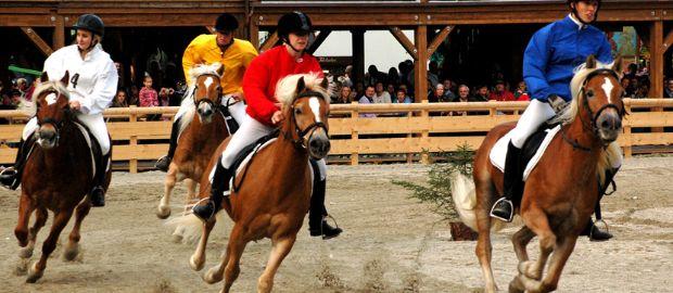 München Pferderennen