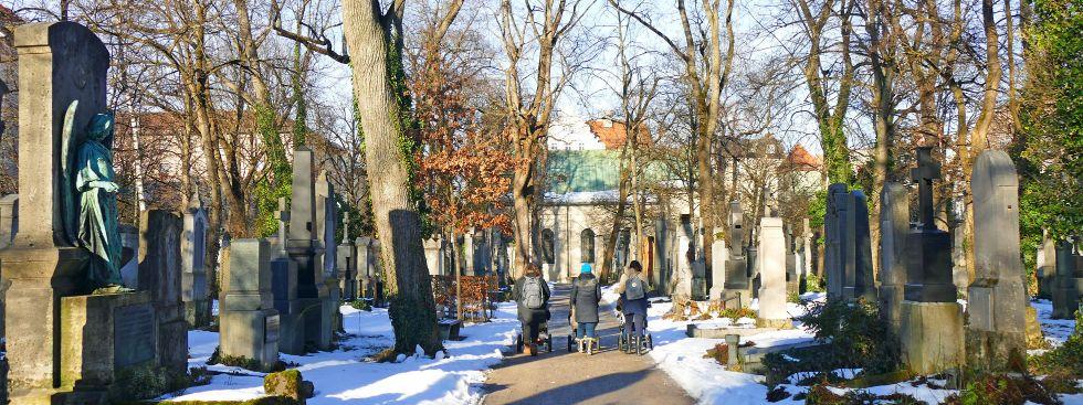 Wintersonne am Südfriedhof, Foto: muenchen.de / Leonie Liebich