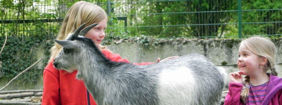 Kinder streicheln Ziege im Tierpark Hellabrunn, Foto: Maria Romanska