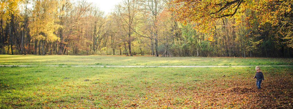 Herbst im Nordteil des Englischen Gartens, Foto: Anette Göttlicher