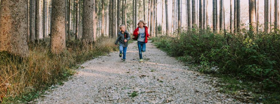 Kinder rennen durch den Herbstwald, Foto: Anette Göttlicher