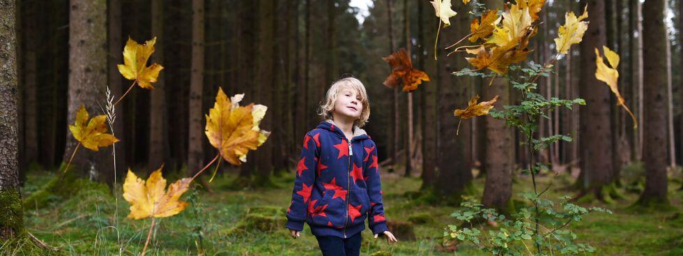 Kinder-Gaudi im Herbstwald, Foto: Anette Göttlicher