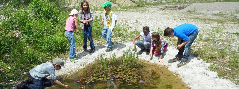 Kinder am Teich im Walderlebniszentrum Grünwald, Foto: Walderlebniszentrum Grünwald