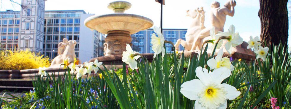 Frühling in der Innenstadt am Brunnen am Lenbachplatz, Foto: muenchen.de / Leonie Liebich