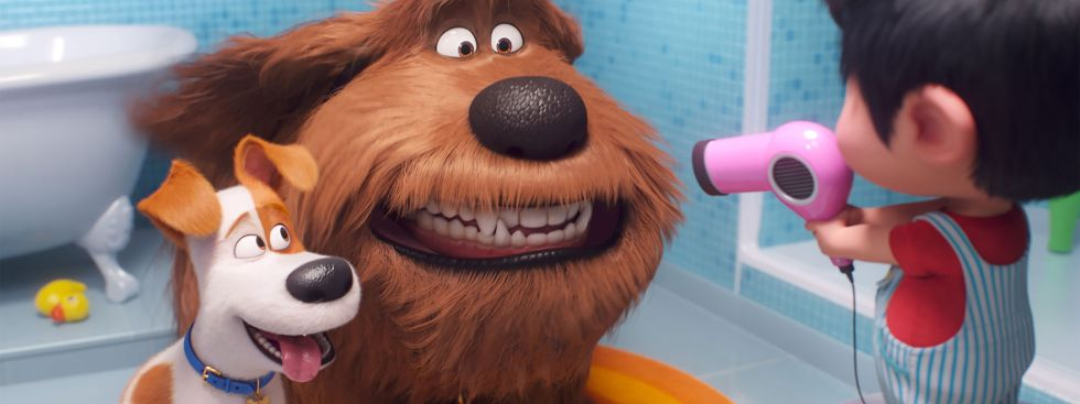 "Szene aus ""Pets 2"", Foto: Universal Studios"