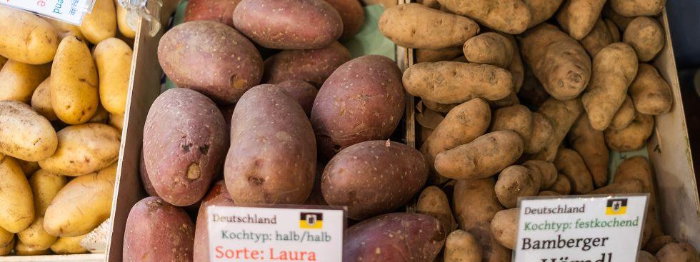 Kartoffeln vom Elisabethmarkt, Foto: Anette Göttlicher