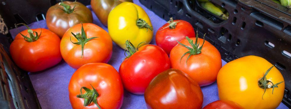 Tomaten auf dem Elisabethmarkt, Foto: Anette Göttlicher