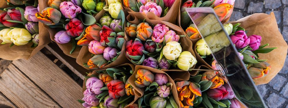 Blumenvielfalt auf dem Pasinger Viktualienmarkt, Foto: Anette Göttlicher
